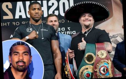 David Haye urges Anthony Joshua to copy Lennox Lewis in Andy Ruiz Jr rematch – despite war of words with fellow Brit – The Sun