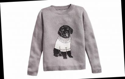 Now You Can Get a Sweater Featuring Your Dog Wearing a Sweater on It, Because Why Not