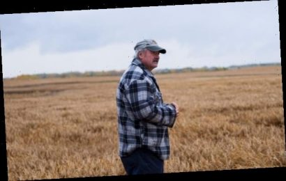 High debts and low yields push Canada's farmers to the brink