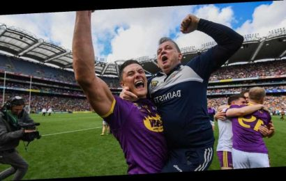 Lee Chin says his relationship with Wexford manager Davy Fitzgerald is a friendship