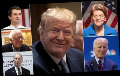 Trump leads all 5 Dem front-runners in 2020 poll despite impeachment
