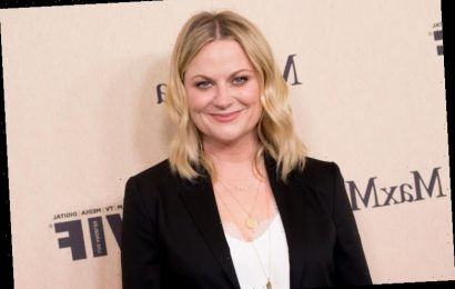 This Popular 'Parks and Recreation' Fan Theory About Leslie Knope Is Actually Completely Wrong