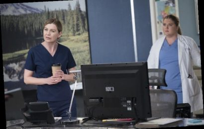 'Grey's Anatomy' Fans Hate Meredith's New Love Interest, But Not For the Reason You Think