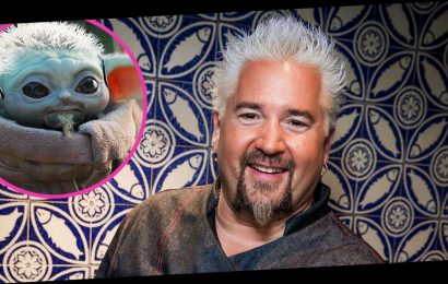 Guy Fieri, Is That You? Celeb Chef Shares Meme of Himself as Baby Yoda