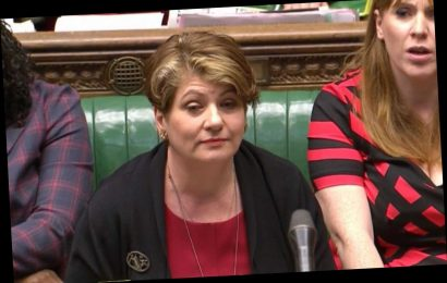 Who is Emily Thornberry and what's her constituency? – The Sun