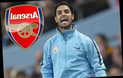 Arsenal could wait a MONTH to appoint new boss with Arteta top candidate to replace axed Emery – The Sun