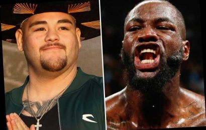 Andy Ruiz Jr could fight Deontay Wilder BEFORE Anthony Joshua does, confirm WBC despite Mexican's loss to Brit – The Sun
