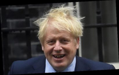 Boris Johnson orders clampdown on judicial review system