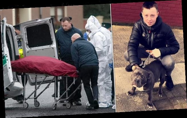 Ireland on the brink of major gang war after 17-year-old dismembered
