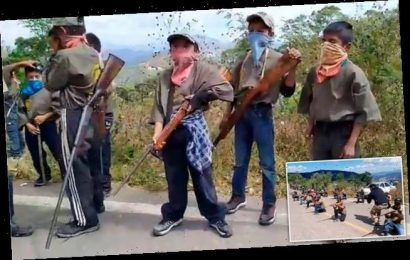 Armed children aged 6-15 in Mexico are recruited by vigilante group
