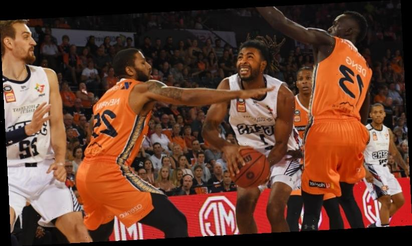 Taipans have too much bite for Adelaide