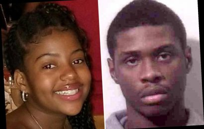 Teen who allegedly 'murdered girl, 13, and injured two others' at a mall could pay with his life – The Sun