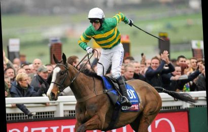 Number 41: The horse who rose through the ranks to give AP McCoy a great day in the saddle at the Cheltenham Festival