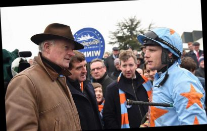 'The Eric Cantona of racing' – Un De Sceaux's owner Colm O'Connell tells the tale of the most remarkable horse