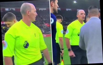 Mike Dean appears to say 'Who the f*** is he?' after shaking hands ahead of Southampton's win over Tottenham – The Sun