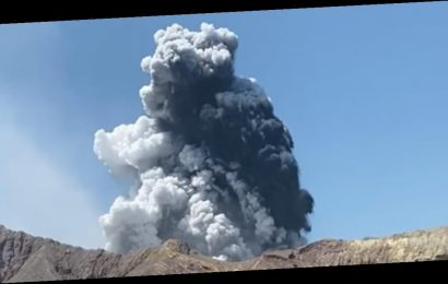 Tourists Capture Harrowing Videos as New Zealand's White Island Volcano Erupts