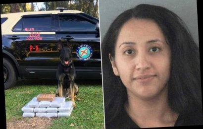 Florida woman busted with $1.2M of cocaine during traffic stop: cops