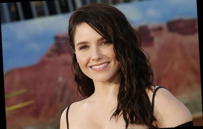 This Is Us Adds Sophia Bush: Is She Playing Kevin's Next Love Interest?