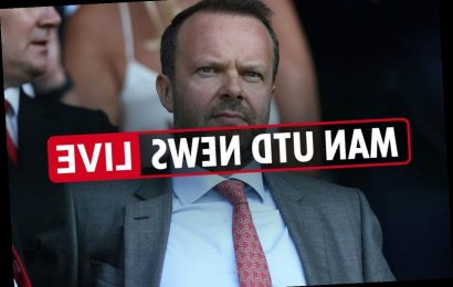 Man Utd transfer news LIVE: Pogba injured for 'few weeks', Woodward not involved in transfers, Calvert-Lewin interest – The Sun