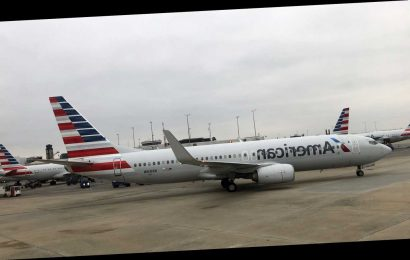 American Airlines passenger sues airline, former employee alleging sexual harassment