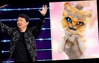 The Masked Singer on Fox spoilers: Who is Kitty? Meet the possible celebrities