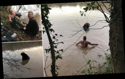 Moment hero passer-by wades into Welsh flood waters to save a woman