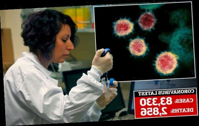Scientists 'are just WEEKS away from vaccine to beat coronavirus'
