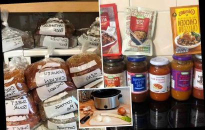 Time-saving mum preps EIGHT WEEKS worth of meals for her family in one sitting to speed up meal times