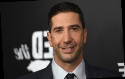 'Friends' Star David Schwimmer Explains Why Show Was 'Groundbreaking' In Its Times