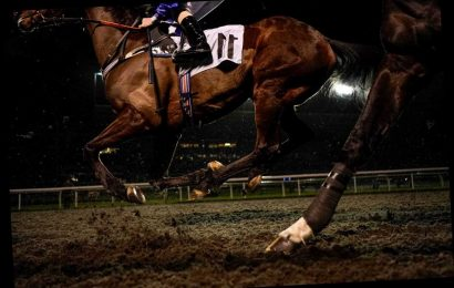 Kempton tips: Racecard, analysis and preview for the feature 32Red Handicap on Monday