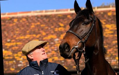 Cheltenham Festival 2020: Paul Nicholls rates Gold Cup contender Clan Des Obeaux his best chance of the meeting