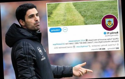 Arsenal hilariously trolled by Burnley with amazing new Twitter background image after Arteta moaned about long grass – The Sun