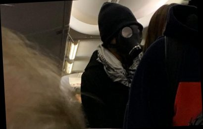 Man in gas mask sparks panic aboard American Airlines flight