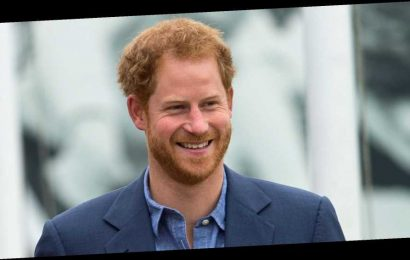 """Prince Harry Asks to be Addressed as Just """"Harry"""" During His Last Set of Royal Engagements"""