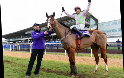 Dublin Racing Festival highlights and what it means for Cheltenham