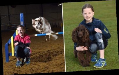 Meet Britain's youngest dog agility trainer, 11, who began aged five