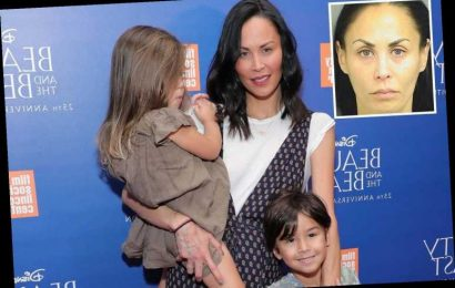 RHONY's Jules Wainstein begs judge to let her see her kids after arrest for 'beating ex with a bat' in front of them – The Sun
