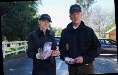 This Real-Life 'NCIS' Case Was Solved 19 Years Later Thanks to 'Relentless Pursuit of Justice' — Just Like On TV