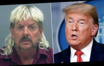 Joe Exotic to Donald Trump: Get Me Out Jail So We Can Party With Some Bigly Cats!