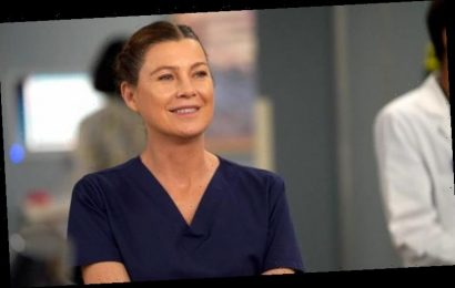 Grey's Anatomy: What was actress Ellen Pompeo's favourite storyline from season 16