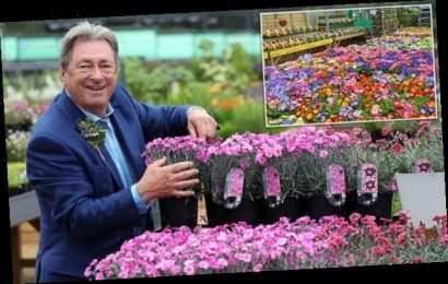 Gardening centres could open almost immediately as industry faces loss