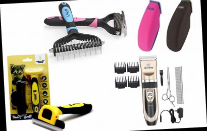 5 Best Dog Grooming Clippers 2020 | The Sun UK