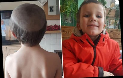 Little boy gets a disastrous haircut from his cheeky brother after asking for an 'old man' style – The Sun