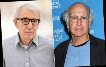 Larry David Doesn't Think Woody Allen 'Did Anything Wrong' After Reading His Controversial Memoir