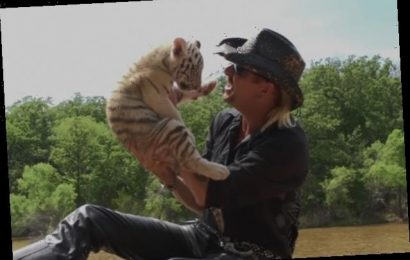 'Tiger King' Big Cat Ballad Has Become a Hit on Spotify