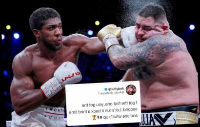 Andy Ruiz Jr calls out Anthony Joshua for trilogy fight, saying 'I got the first one, you got the second' – The Sun