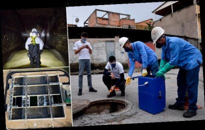 Government is considering testing SEWAGE for signs of coronavirus