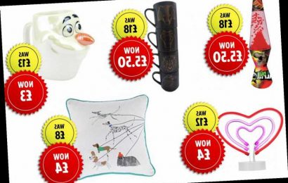 Argos launches a huge clearance sale on homeware including Harry Potter and Jurassic World products