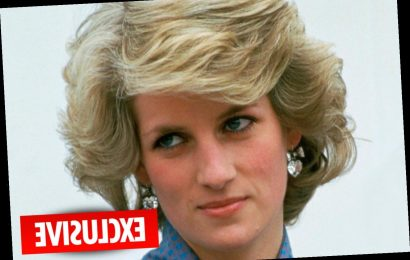 Netflix documentary will claim Princess Diana tried to kill herself four times in new torment for William & Harry – The Sun