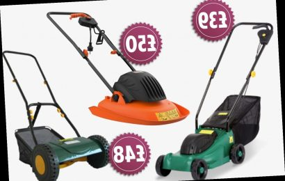 Where to buy the cheapest lawn mowers including cylinder, rotary and hover machines